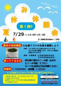夏休み体験会(苔紙)